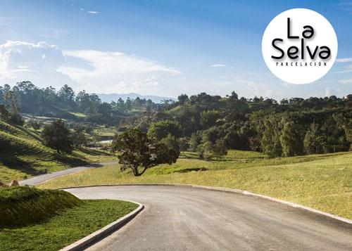 Proyecto Lotes en Parcelación - Corredor San Antonio - La Ceja
